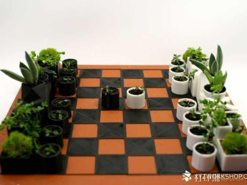 小型植物棋盘 3D模型  图3