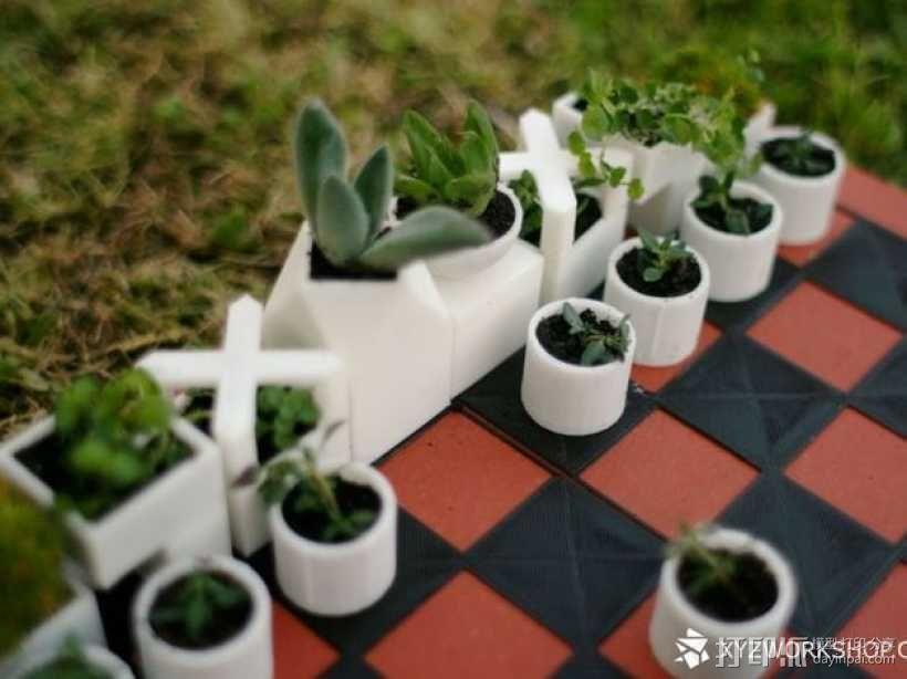 小型植物棋盘 3D模型  图4