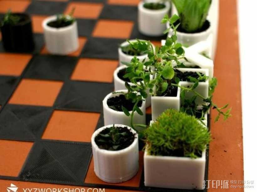 小型植物棋盘 3D模型  图5