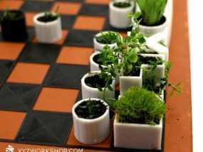 小型植物棋盘 3D模型