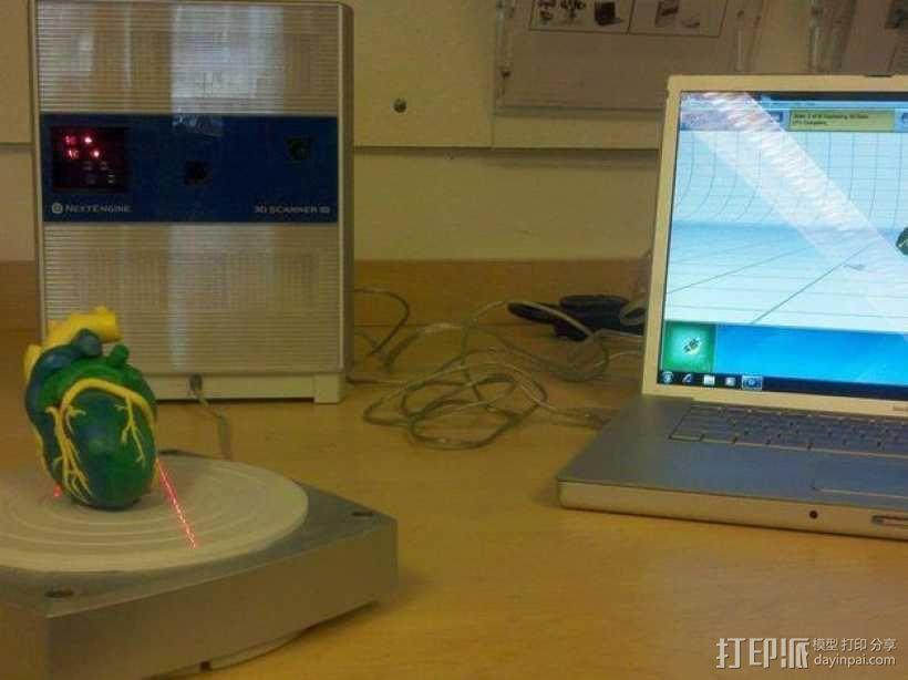 心脏解剖实物模型 3D模型  图2