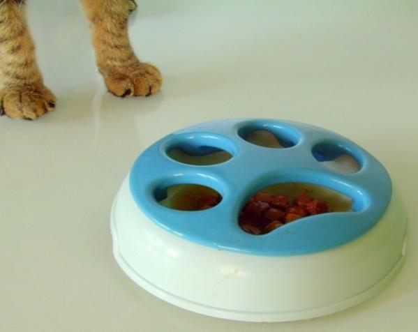 猫咪慢食器 3D模型  图1