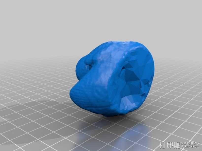 迷你大黄鸭 3D模型  图2