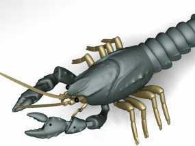 小龙虾 3D模型