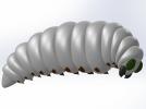 黄蜂幼虫 3D模型 图2