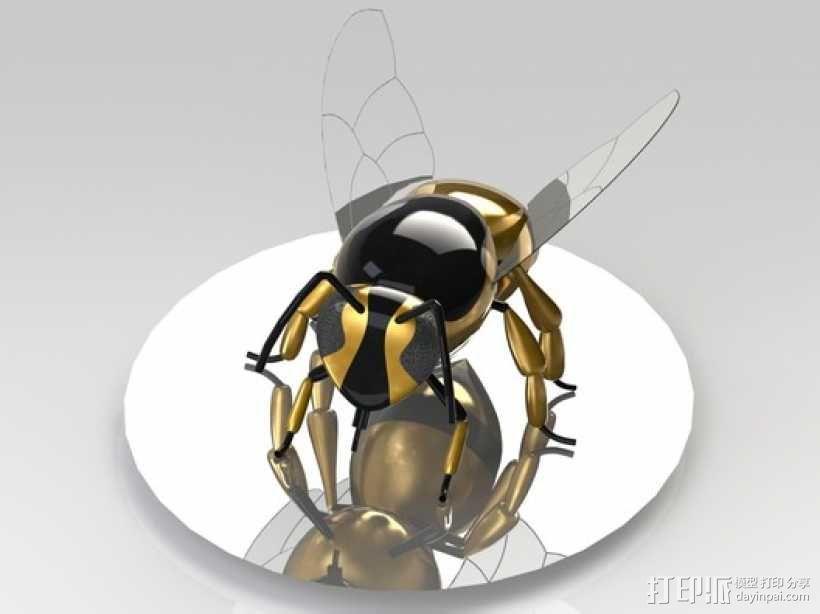 黄蜂 3D模型  图2