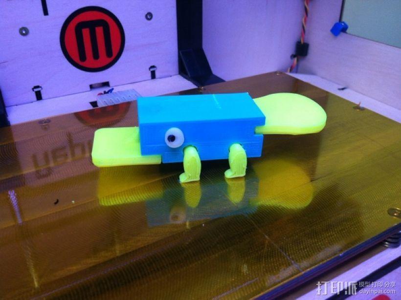 鸭嘴兽模型 3D模型  图2