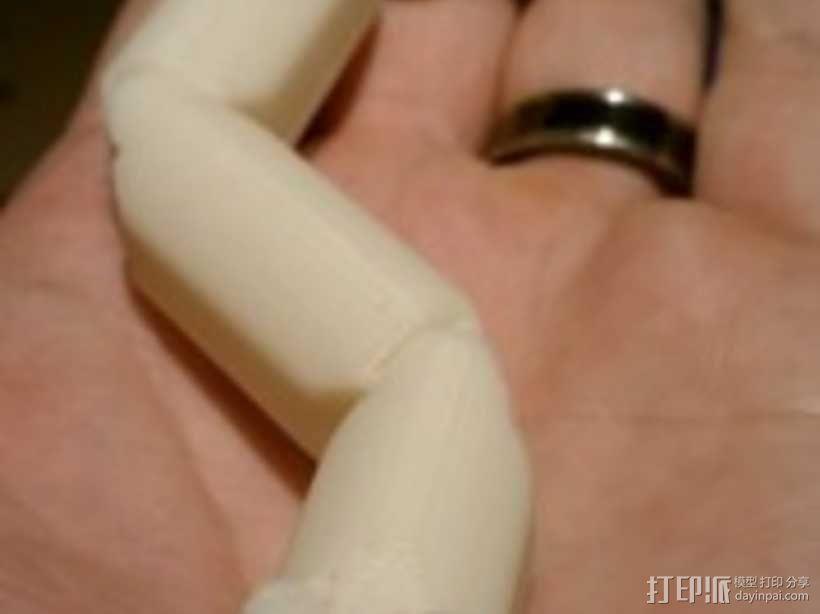 关节蛇 3D模型  图8