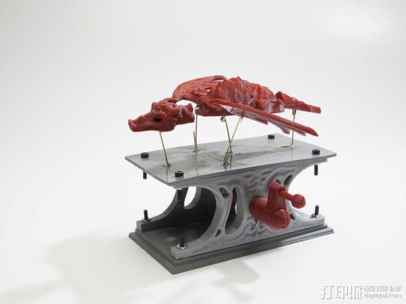 机械龙 3D模型  图14