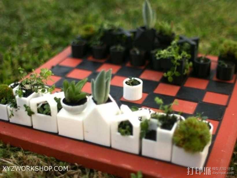 迷你植物象棋 3D模型  图1