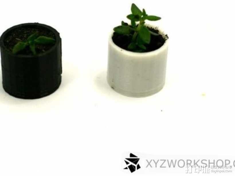 迷你植物象棋 3D模型  图8