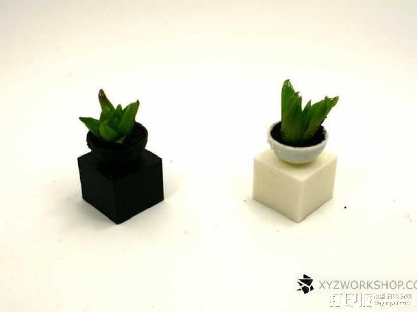 迷你植物象棋 3D模型  图13