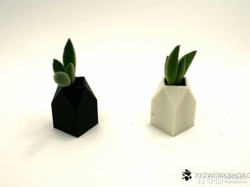 迷你植物象棋 3D模型  图12