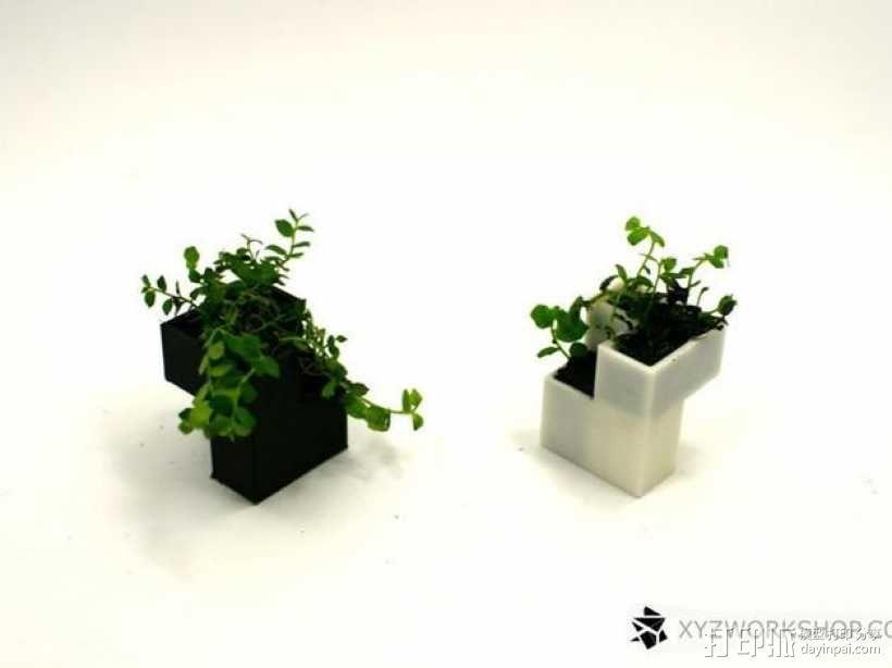 迷你植物象棋 3D模型  图11