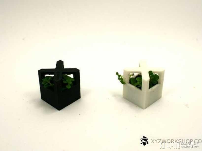 迷你植物象棋 3D模型  图10