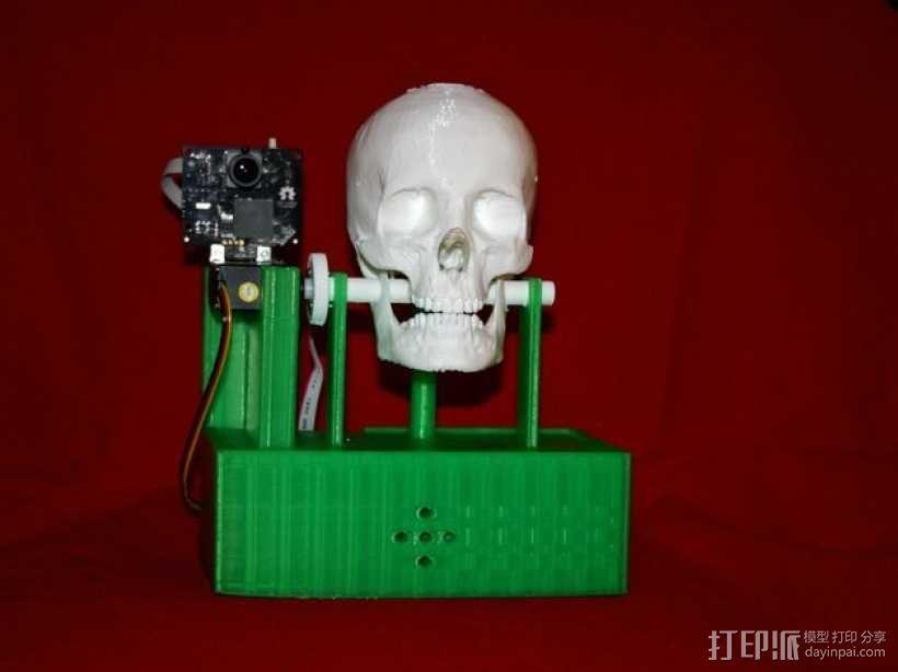 会说话的骷髅头 3D模型  图1