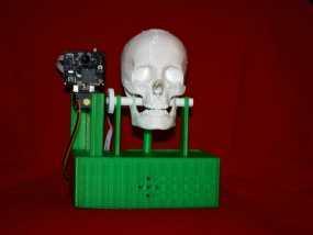 会说话的骷髅头 3D模型