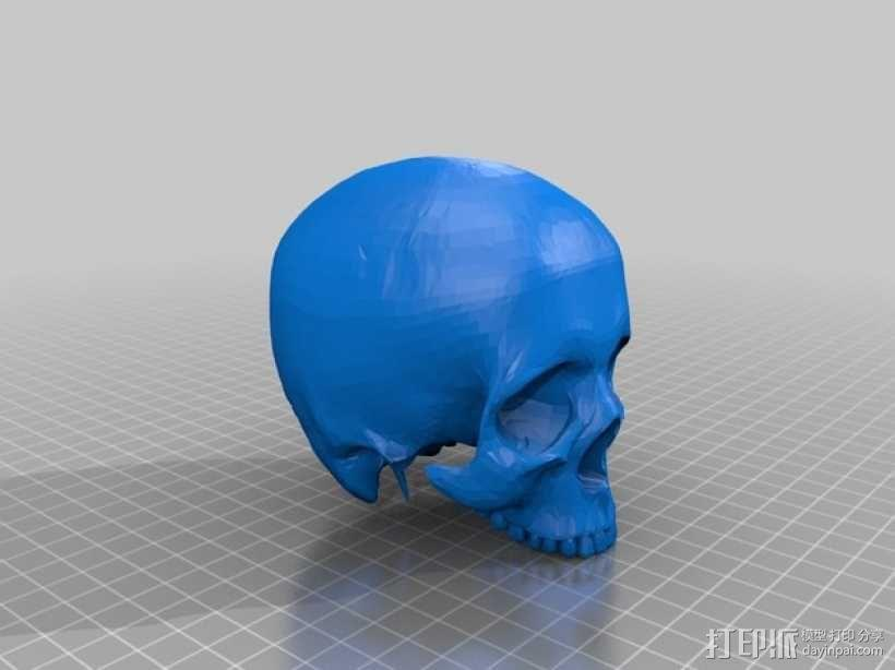 会说话的骷髅头 3D模型  图6
