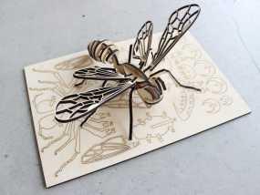 蜜蜂拼图 3D模型