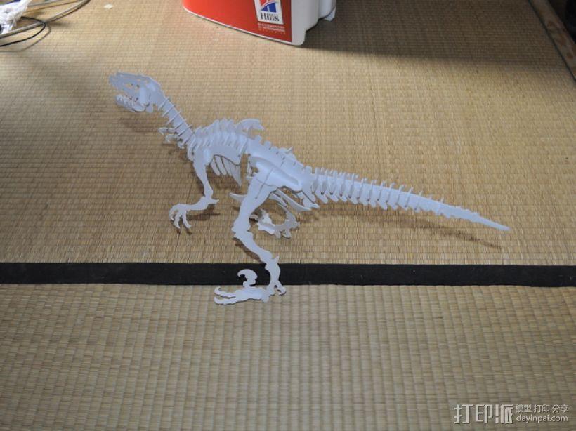 迅猛龙 3D模型  图7