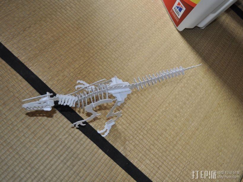 迅猛龙 3D模型  图8