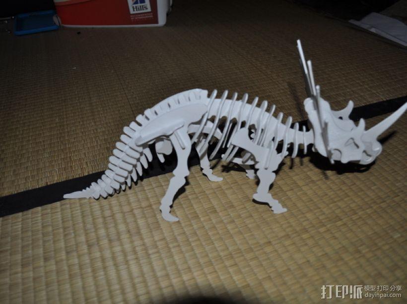 三角龙 3D模型  图3
