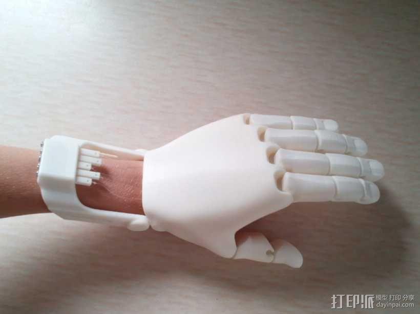 可弯曲的手   模型 升级版 3D模型  图2