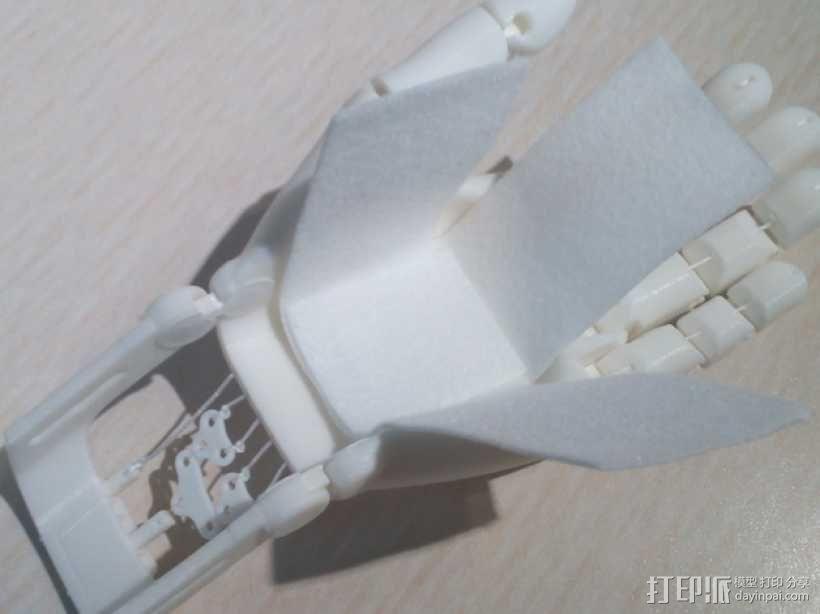可弯曲的手   模型 升级版 3D模型  图21