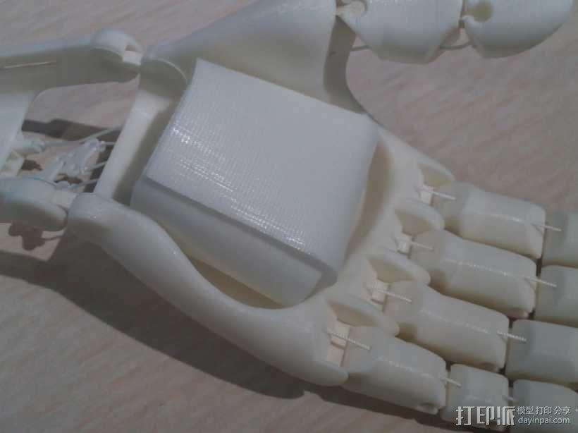 可弯曲的手   模型 升级版 3D模型  图18