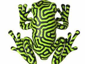 双色雨蛙 树蛙 3D模型
