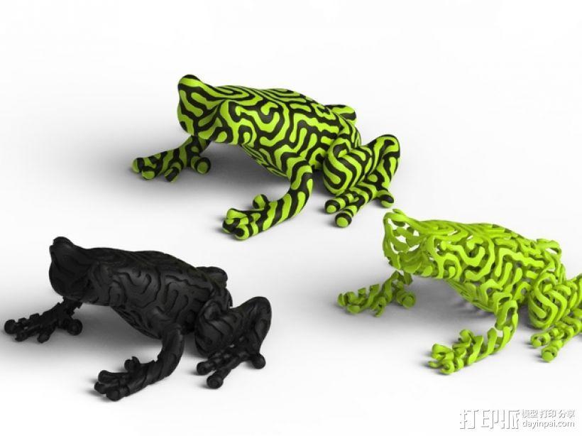 双色雨蛙 树蛙 3D模型  图3