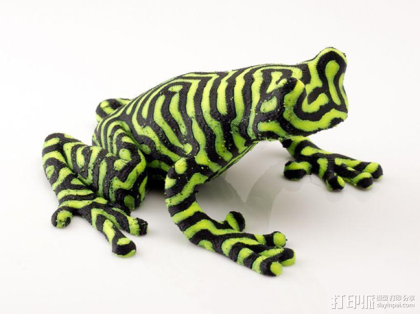 双色雨蛙 树蛙 3D模型  图4