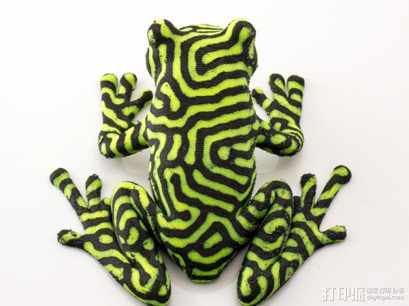 双色雨蛙 树蛙 3D模型  图6