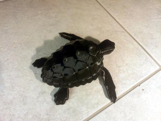 海龟 3D模型  图4