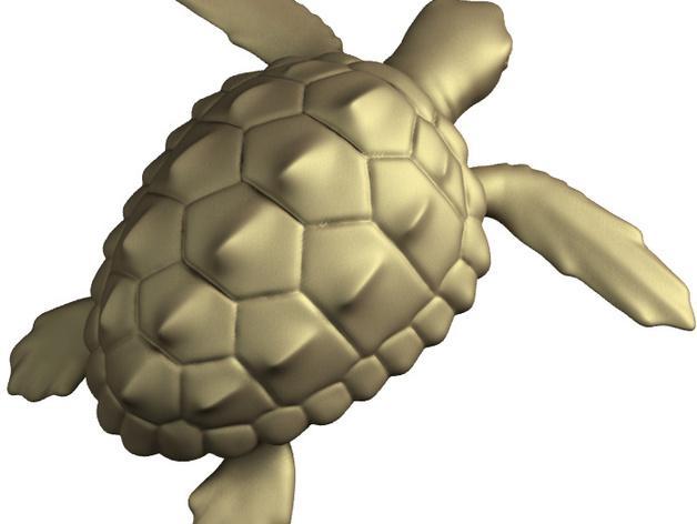 海龟 3D模型  图6