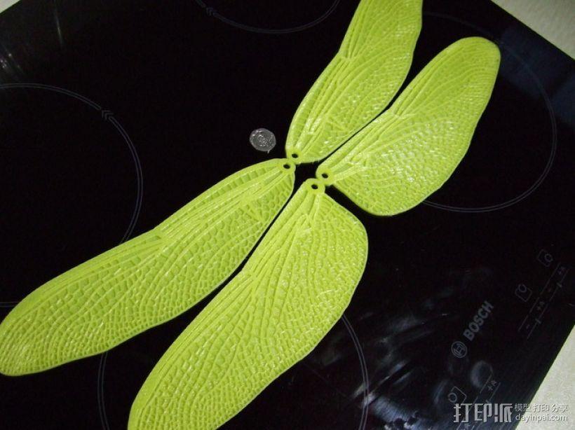 蜻蜓翅膀 3D模型  图3