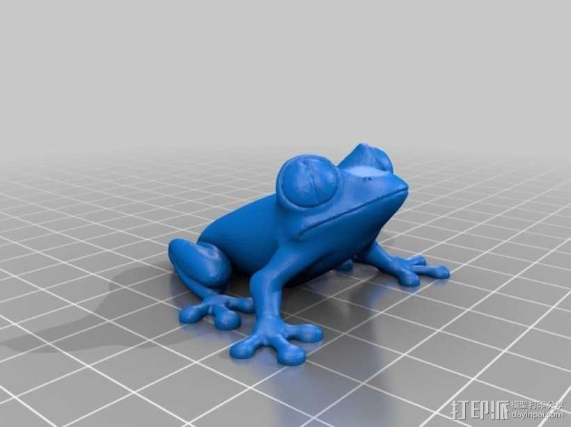 非洲树蛙 3D模型  图1