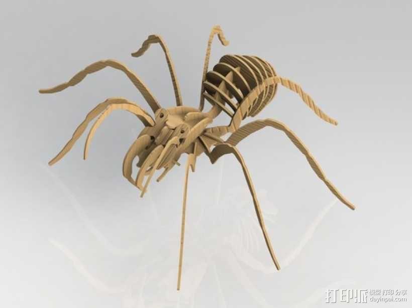狼蛛 3D模型  图3