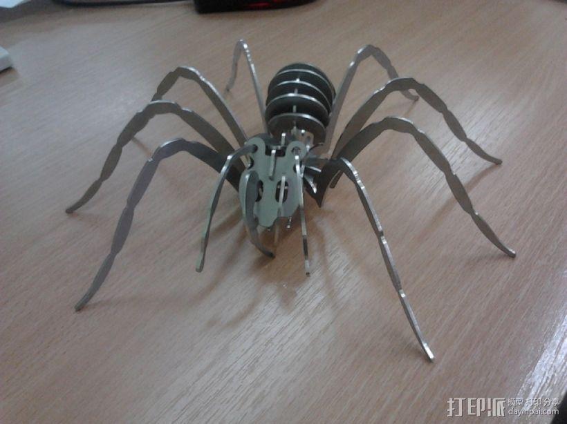 狼蛛 3D模型  图2