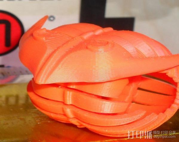 三叶虫 3D模型  图2