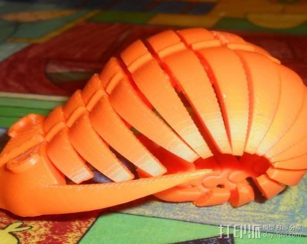 三叶虫 3D模型  图11