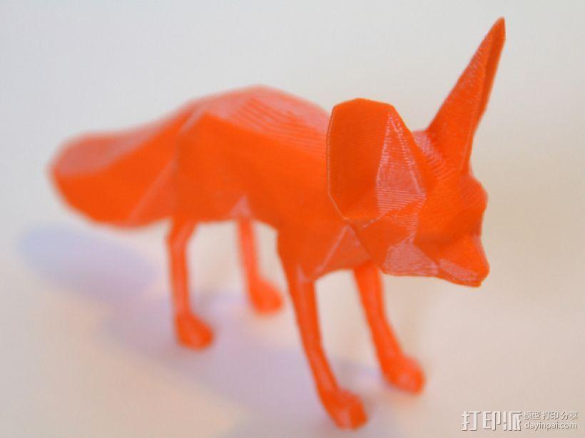 耳廓狐  3D模型  图1