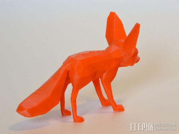 耳廓狐  3D模型  图2