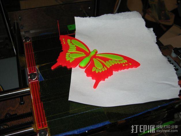 蝴蝶 3D模型  图3