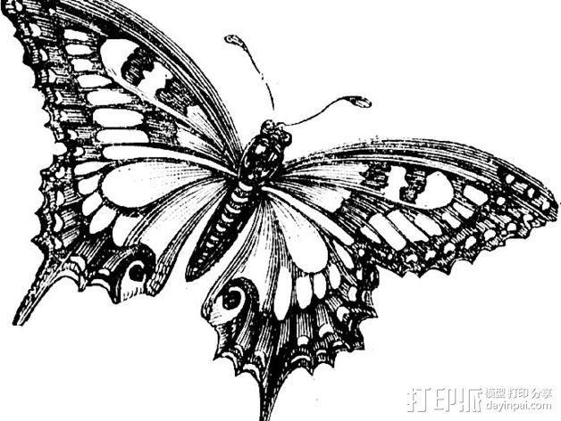 蝴蝶 装饰品 3D模型  图3