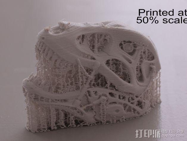 会发光的霸王龙 3D模型  图7