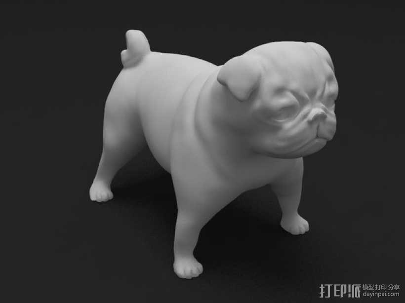 八哥犬 3D模型  图1