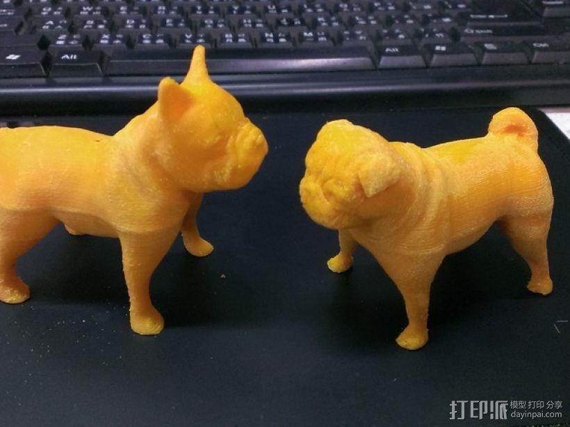 八哥犬 3D模型  图4