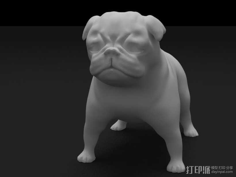 八哥犬 3D模型  图3