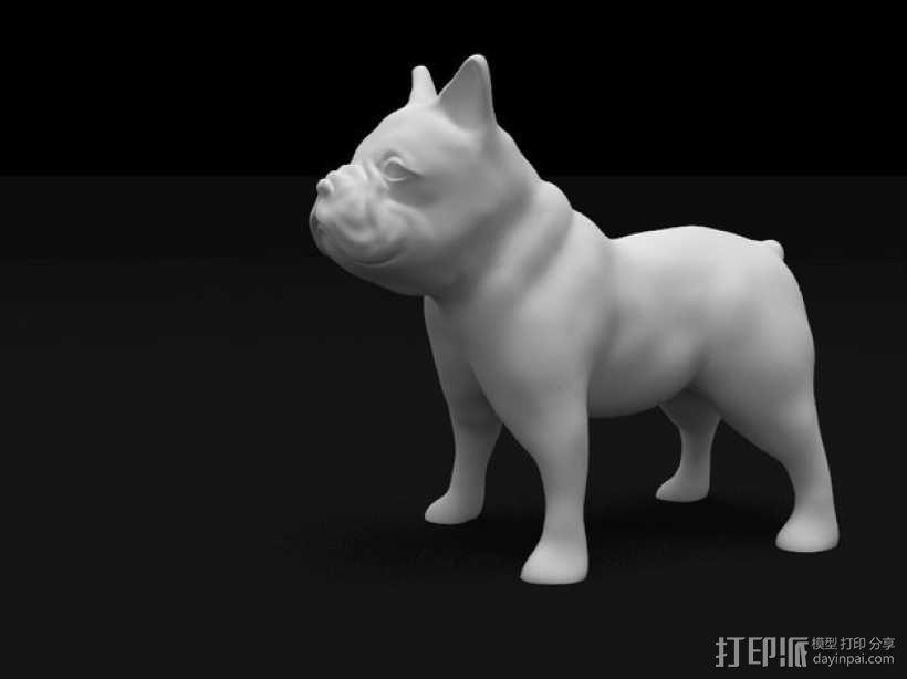 法国斗牛犬 3D模型  图3